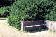 10_2bhfriedhof-sihlfeldfv.jpg